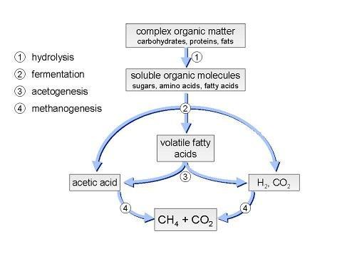 anaerobic wastewater treatment process pdf